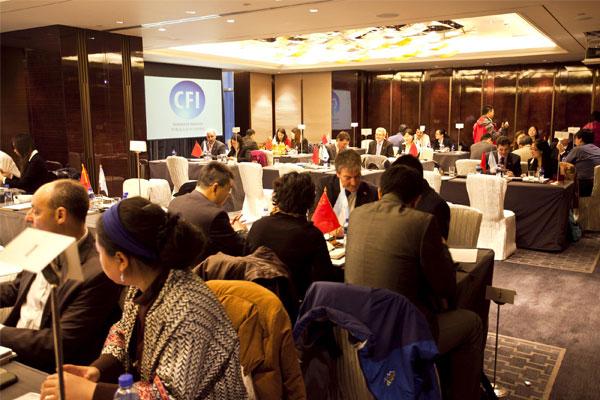 2013年阿根廷-中国企业对口洽谈会