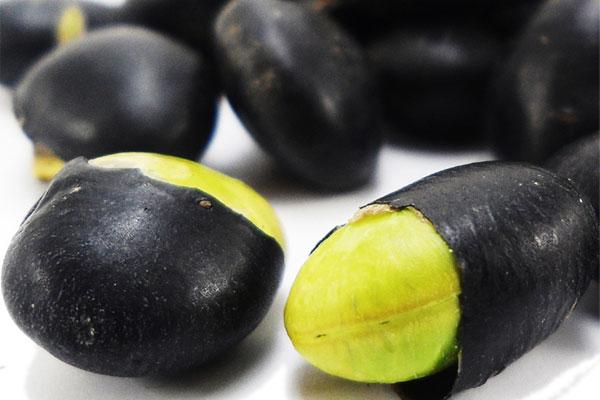 研究表明:多吃黑豆可以补铁