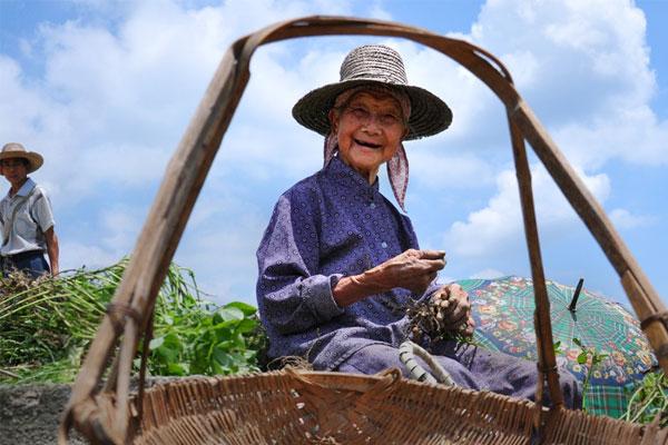维乐夫解开百岁老人长寿之谜