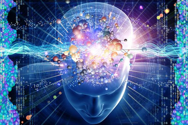 磷脂酰丝氨酸(PS)养护大脑