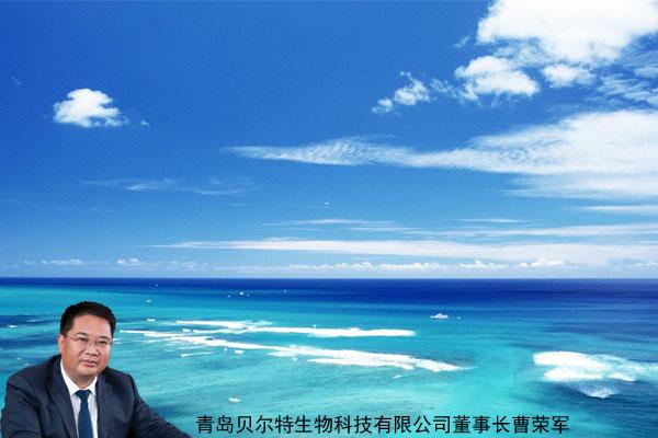 实现蓝色海洋梦想的贝尔特
