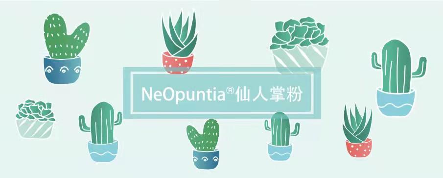 让大餐的脂肪绕道而行:NeOpuntia®梨果仙人掌粉